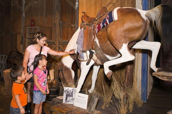 The Buckhorn Saloon & Museum and...
