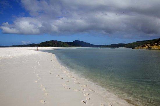 Cairns to Brisbane Hop-on Hop-off Travel Pass