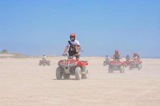 Private Tour: 6-Hour Quad Bike Safari...