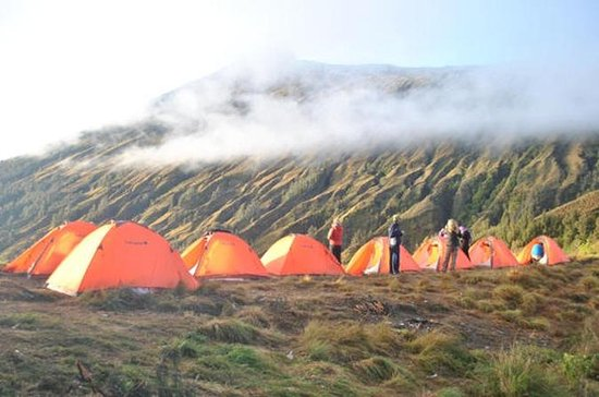 2-dagars Mt Rinjani Volcano Trekking ...