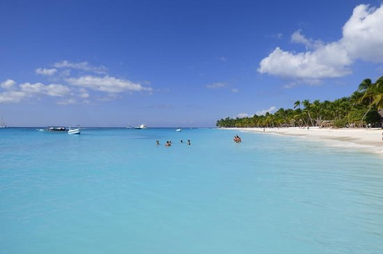 Tagesausflug von Punta Cana: Insel Saona mit dem Schnellboot und...