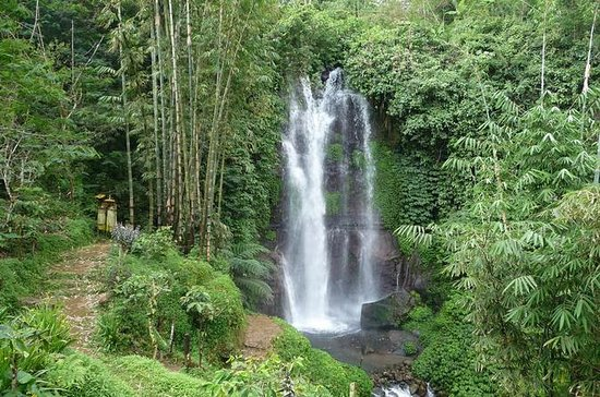 Private Tour: Munduk Waterfalls...