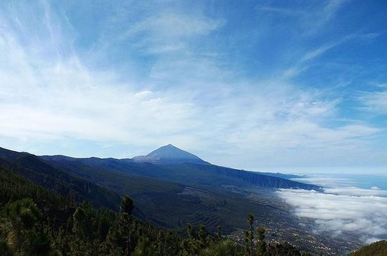 Private Shore Excursion: Tenerife by