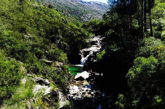 Peneda Gerês National Park Day Trip ...