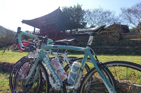 Tour in bici privata di più giorni da
