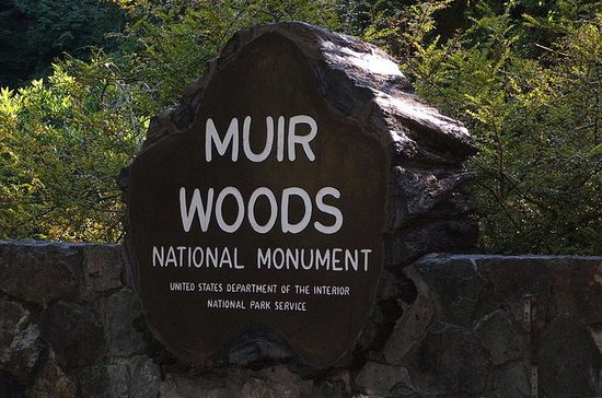 Muir Woods, Sausalito and Tiburon Day...