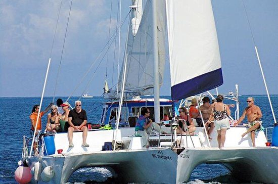 Catamaran Sail and Snorkel Tour in...
