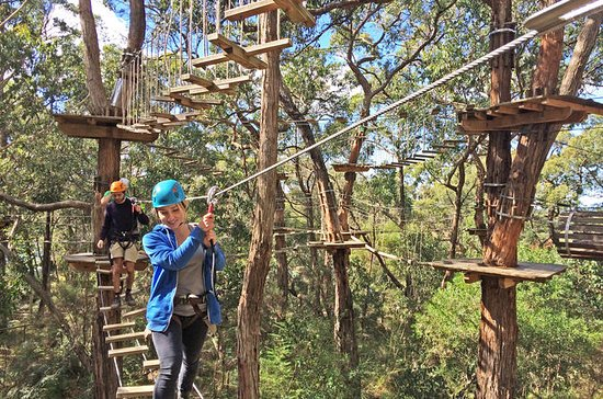 Mornington Peninsula Enchanted Adventure Garden Ziplining and Canopy...