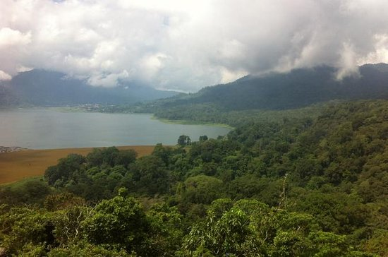 Private Rainforest Trekking Tour with