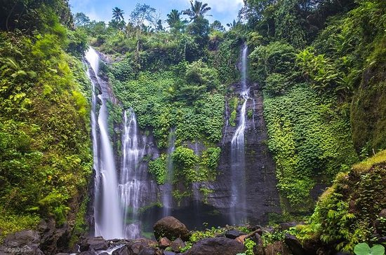 Private Sekumpul Waterfall Trekking ...