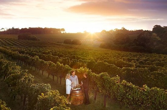 Leeuwin Estate: Food and Wine