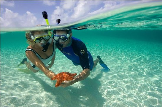 Full-Day Snorkeling Cruise from...