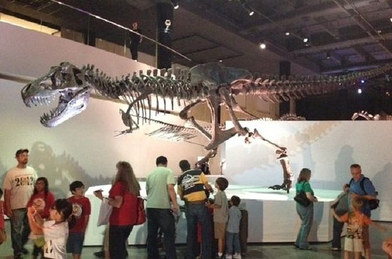 Houston Museum of Natural Science ...