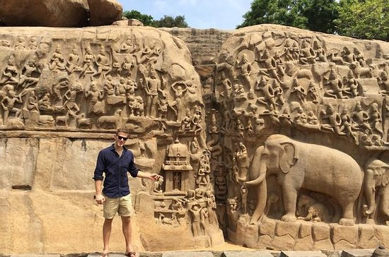 Day Trip to Mahabalipuram on Royal...