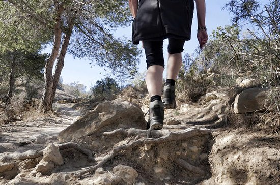 Hiking Experience in Sierra Nevada ...