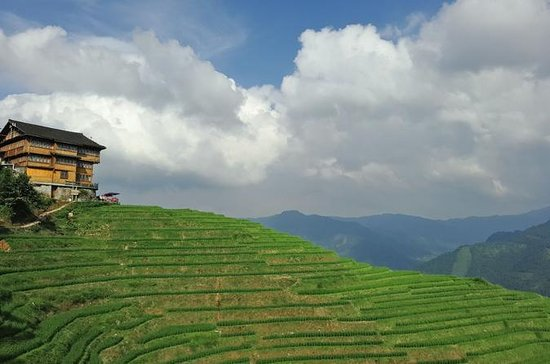 Private Day Tour: Longji Rice...