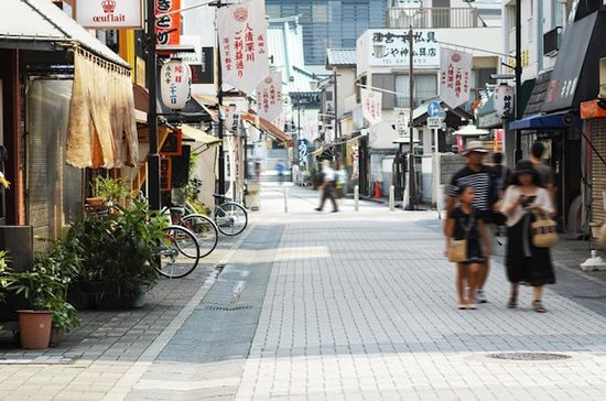Tokyo Sunamachi Ginza Shotengai and Depachika Half-Day Walking Tour...