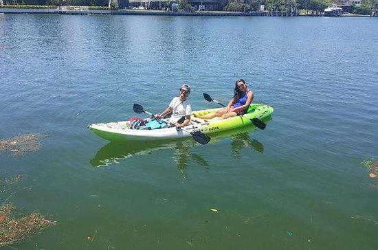 1 Hour Miami Beach Double Kayak Rental