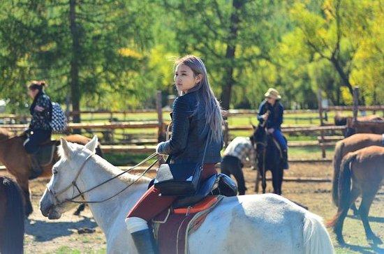 Excursión a caballo de 1 día al...