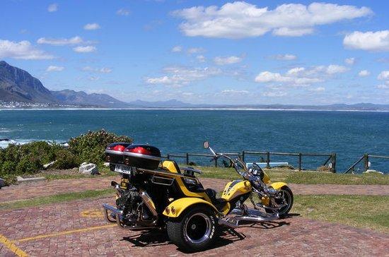 Hermanus e Whale Route Trike Tour da...