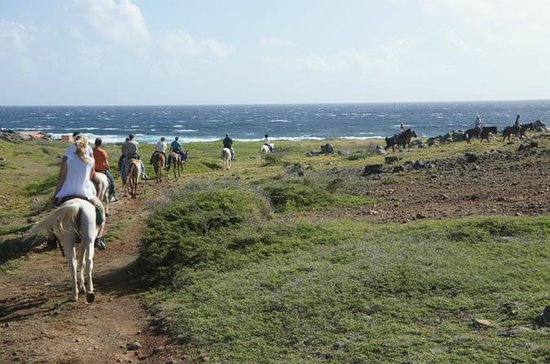 Tour a caballo por Aruba a Hidden...