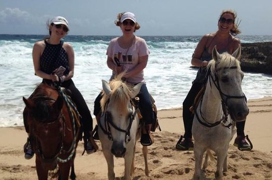Aruba Horseback Riding Tour to...