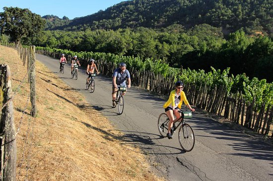 Half-Day Napa Valley Bike and Wine Tour