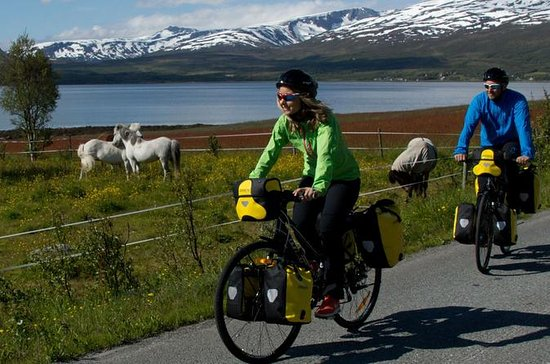 Tromso Bicycle Rental, One to Eight...