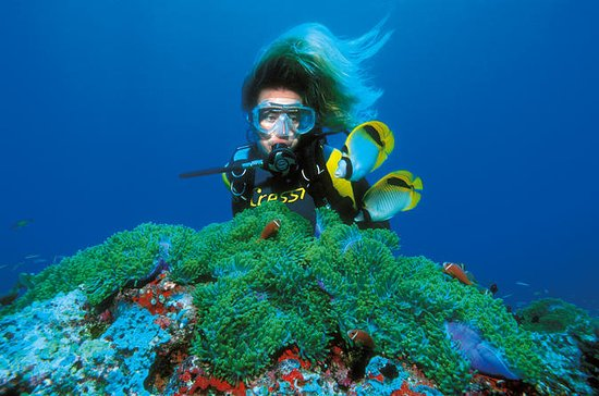 PADI Discover Scuba Diving in Bavaro