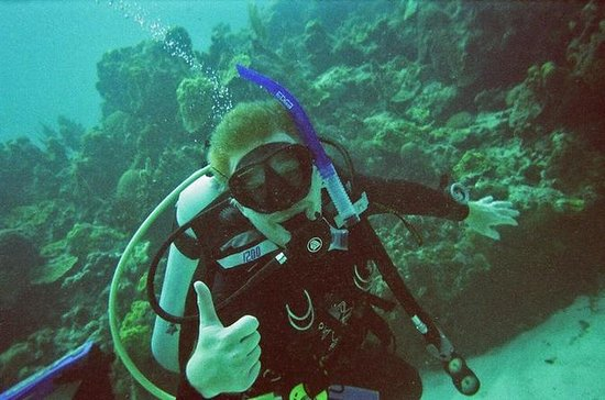 PADI Discover Scuba Diving in Montego...