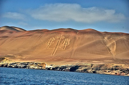 Ballestas Islands and Paracas Reserve...