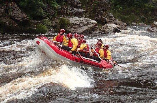 Viaje de King River White Water Raft...