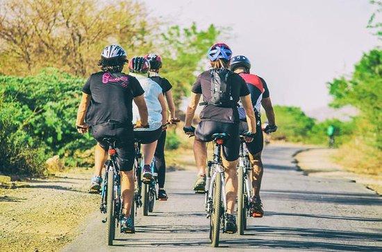 Private Cycling Tour: ervaar de ...
