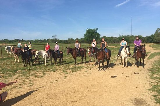 Memphis Trail Ride à cheval