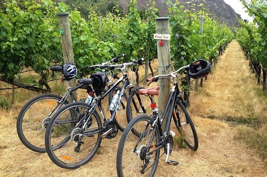 Half-Day Self-Guided Ride and Wine...