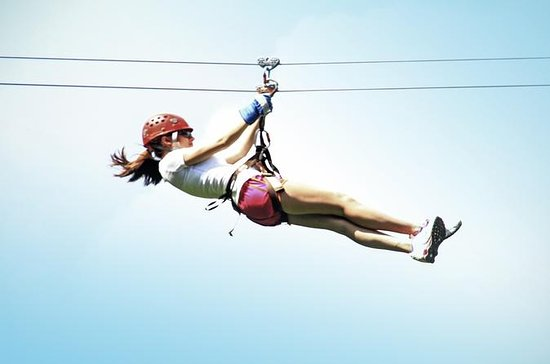 Campo Rico Ziplining Adventure in ...