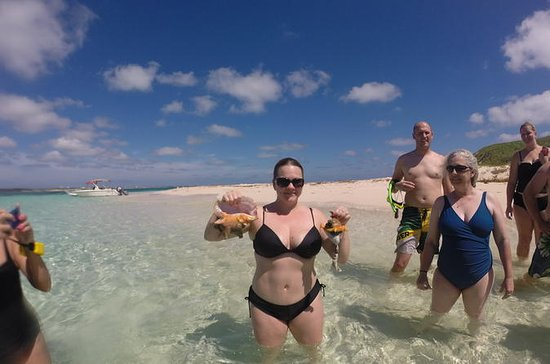 Suprême Snorkel Adventure à Grand Turk