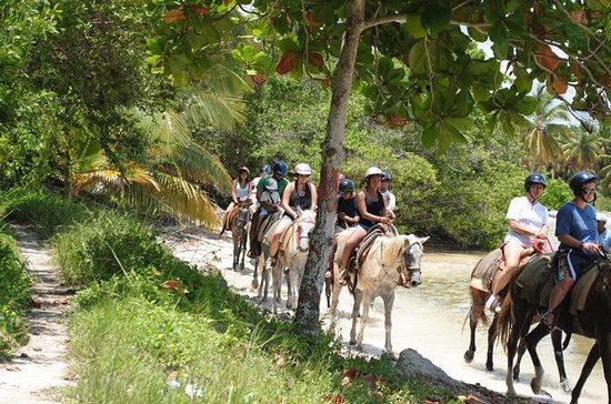Punta Cana Horseback Riding Adventure