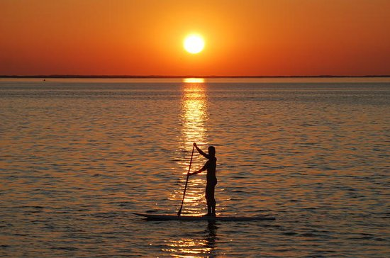 Sunset Dolphin Paddleboard Excursion ...