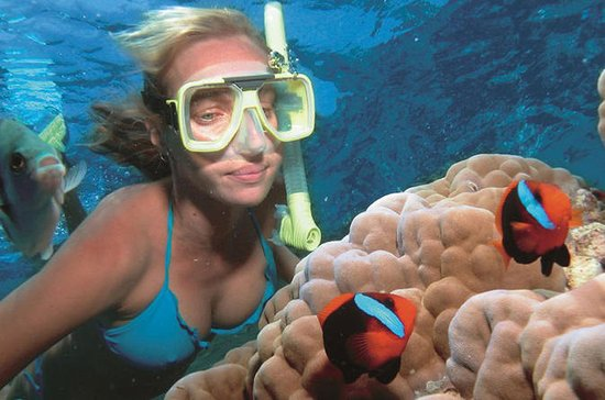 Wave Break Island Snorkel Tour on the...