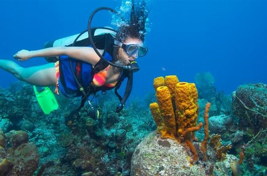 Wave Break Island Scuba Diving en la...