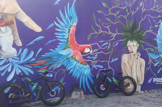 Fat Bike Graffiti y Art Tour en...