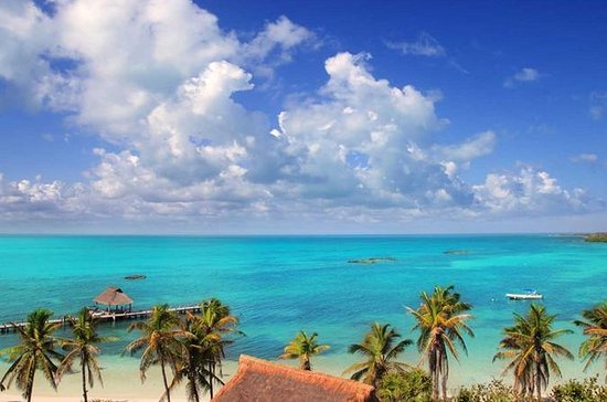 Contoy Island and Isla Mujeres Day...