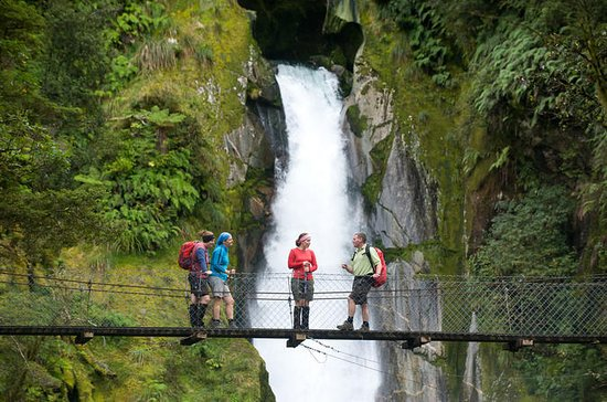 Full-Day Milford Sound Walk and