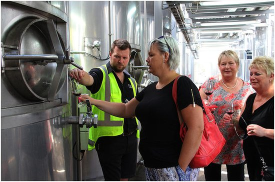 Half-Day Ultimate Wine Tour in Napier