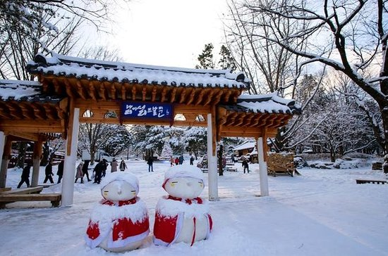 Day Trip to Nami Island and Gangchon...