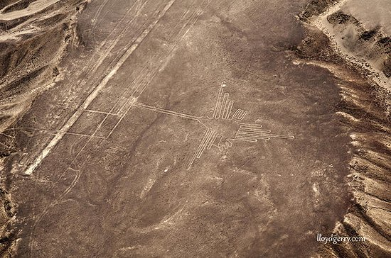 Nazca Lines and Huacachina Oasis from ...