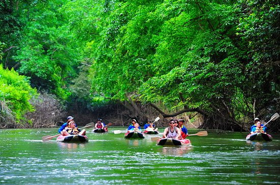 Khao Sok National Park and Canoe ...