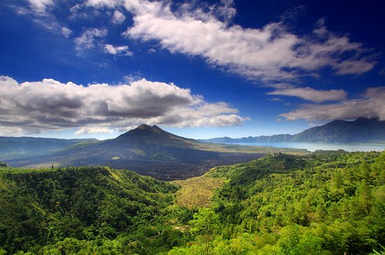 Private Tour: Full-Day Bali...