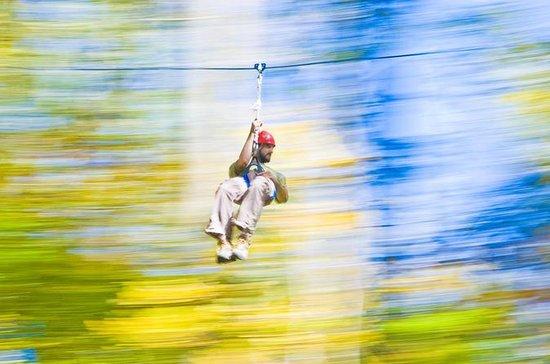 Zipline Tour y Aerial Challenge Combo...
